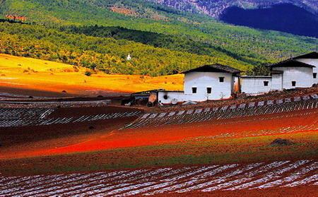 西 摄影欣赏 重庆园林景观设计公司,重庆绿城园林景观设计公司,