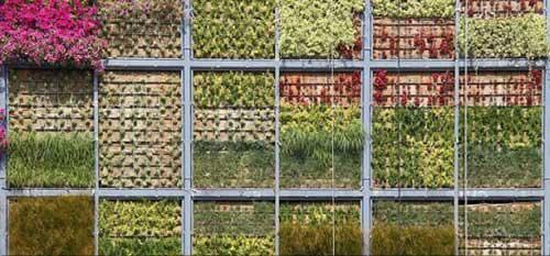 整个金属结构建立在用于便于灌溉基础之上