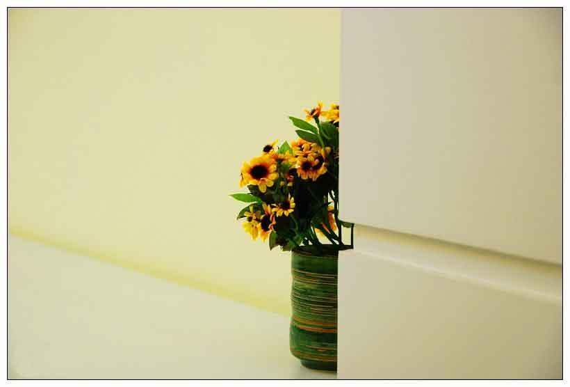 园林设计之:室内绿化植物的陈设